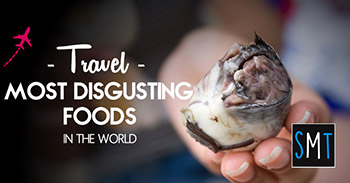 most-disgusting-foods-in-the-world1-small